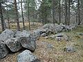 Hägnad3 Hållets naturreservat Nyköping.jpg