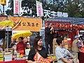 HK CWB 銅鑼灣 Causeway Bay 維多利亞公園 Victoria Park LNY 年宵花市 Lunar New Year Fair Market February 2019 SSG Benny Tai Yiu Ting.jpg