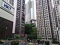 HK Kennedy Town Mid-levels West 蒲飛路 Pokfield Road September 2019 SSG 29.jpg