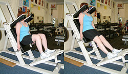 Hack squat machine.