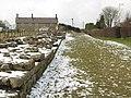 Hadrian's Wall (5) - geograph.org.uk - 1724611.jpg