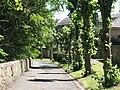 Hallorchard Road (3) - geograph.org.uk - 1490566.jpg