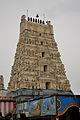 Hamm-Hindu--090606 7835-.jpg