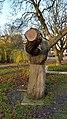Hand ondersteunt boom (2).jpg