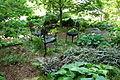 Hauck Botanic Gardens - DSC03778.JPG