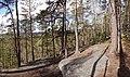 Haukkavuori 2.jpg