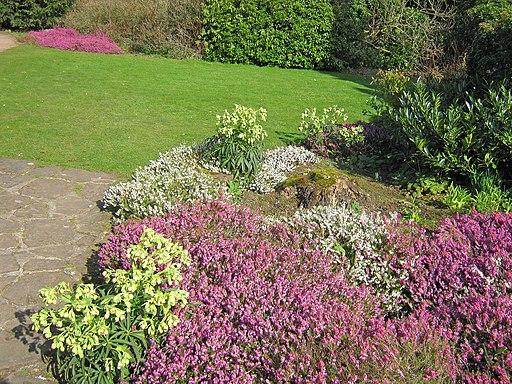 Heather Garden at Newstead Abbey (geograph 4261912)