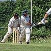 Hertfordshire County Cricket Club v Berkshire County Cricket Club at Radlett, Herts, England 014.jpg