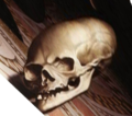 "Holbein's ""Ambassadors"" - skull with fixed perspective.png"
