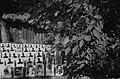 Homenaje a detenidos desaparecidos en jardines de Villa Grimaldi.jpg