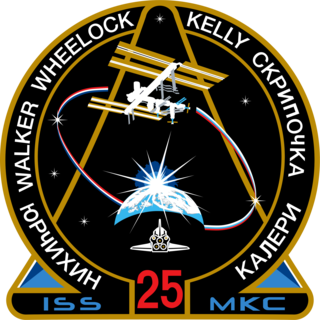 Expedition 25 mission to the International Space Station