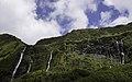 Ilha das Flores P5270217 (36010353015).jpg