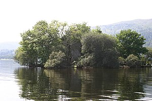 Inchgalbraith, Loch Lomond.jpg