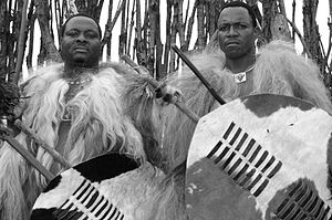 Culture of Swaziland - Warriors in full incwala dress