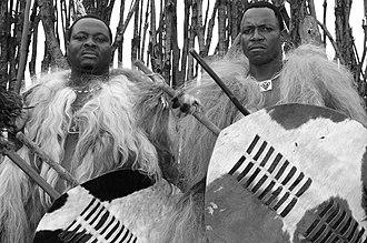 Incwala - Warriors in full incwala dress