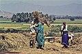 India-1970 041 hg.jpg