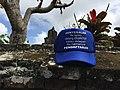 IndonesiaElectionCap.jpg