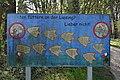 Information board near Willergasse 02, Rodaun.jpg