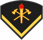 Insignia BM P3.PNG
