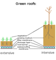 Intensive extensive green roofs.png