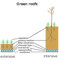 Green roof - Wikipedia