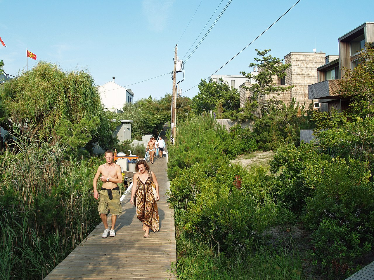 Fire Island Pines Party