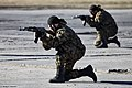Internal troops special units counter-terror tactical exercises (556-35).jpg
