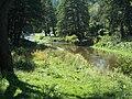 Iskar river in Pancharevo district, Sofia.jpg