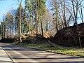Jüdischer Friedhof an der Oberen Illereichener Straße - panoramio.jpg