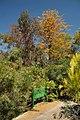 Jardí Botànic de Barcelona (27496610286).jpg