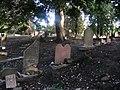 Jewish cemetery in Gdansk - panoramio - Sławek Zawadzki (7).jpg