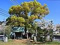 Jizou-dou, Okehazama-Kita2 Midori Ward Nagoya 2009.JPG