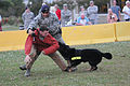 K9 demonstration 140514-F-BD983-030.jpg