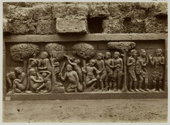 KITLV 28032 - Kassian Céphas - Relief of the hidden base of Borobudur - 1890-1891.tif