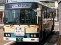 Kaetsunobus 217.JPG