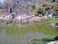 Kanker ( Gadiya pahad talab ) Rajesh ... - panoramio.jpg