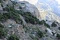 Kashtun da waygale Nuristan - panoramio.jpg