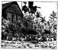 Katoaga à Lano (fin 1880s).png