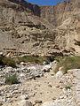 Kedem Stream, Judean Desert, Israel.jpg
