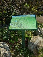 Kirstenbosch National Botanical Garden by ArmAg (20).jpg