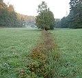 Kleinfrankreich - panoramio - Immanuel Giel (1).jpg