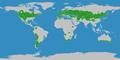 Klimagürtel-der-erde-warmgemäßigte-zone.png