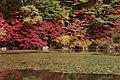 Kobe municipal forest botanical garden24s3200.jpg