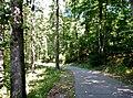 Kocher-Jagst-Radweg - panoramio (3).jpg