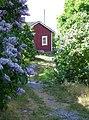 Kukkiva kuja Utössä 2.jpg