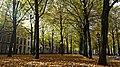 LVoorhout.DH.Nov.2012.jpg