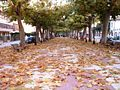 La Avenida de Requena (Valencian Coun try, Spain) en 2001.JPG