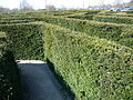 Labyrinth in Stockeld Park 02.JPG