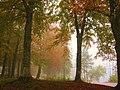 Lake Bohinj Mist - panoramio.jpg