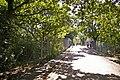 Lakenheath exit from Oakwood Park, London N14 - geograph.org.uk - 868422.jpg